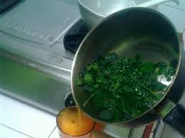 Image result for Boil Moringa Leaves With Lime